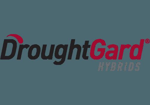 DroughtGard Hybrids